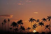 Hawaiian Sunset - Honolulu Hawaii