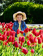 Wednesday  5th May <br />After the storms , sunny weather again <br />Grace Bacon 3 years from Blackpool enjoys the Tulips at Blackpools Stanley Park