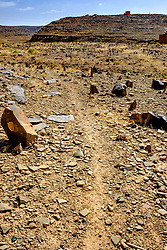 An old Muslim graveyard, with the graves marked by simple stones, near Zagora, Morocco<br /> <br /> (c) Andrew Wilson | Edinburgh Elite media