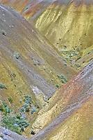 Yellow Mounds area near Dillon Pass.  Badlands National Park,  South Dakota, USA