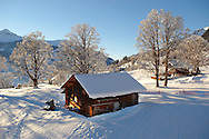 Swiss chalets in the winter snow near Grindelwald - Swiss Alps - Switzerland