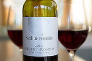 Label of English wine - Bottle of Sedlescombe red wine Regent Rondo poured into wine glasses from Sedlescombe Vineyard, Kent, UK