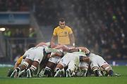 "Twickenham, Surrey. UK. Scrum Half, Will GENIA, ""Looking for the ball"" during the  England VS Australia, Autumn International. Old Mutual Wealth Series. RFU Stadium, Twickenham. UK<br /> <br /> Saturday  18.11.17<br /> <br /> [Mandatory Credit Peter SPURRIER/Intersport Images]"