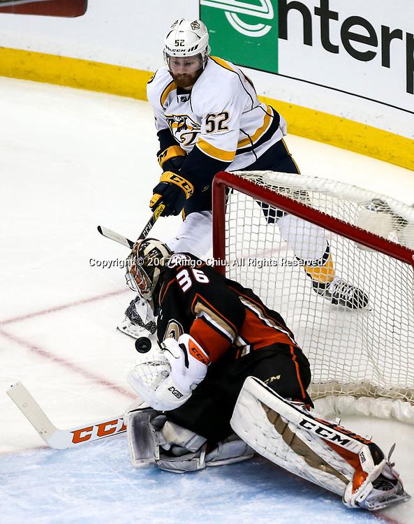 5月12日,阿纳海姆鸭队守门员John Gibson (下) 在比赛中扑救。当日,在美国加利福尼亚州的阿纳海姆举行的2016-2017赛季國家冰球聯盟(NHL)季后赛西部决赛,阿纳海姆鸭队 (Anaheim Ducks) 主场以3比2不敌纳什维尔捕食者队(Nashville Predators)。新华社发 (赵汉荣摄)
