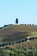 vineyards sandeman sign douro portugal