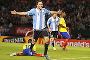 Gonzalo Higuain.<br /> <br /> 2014 World Cup Qualifier vs Ecuador.<br /> June 2nd, 2012.<br /> Estadio Monumental Vespucio Liberti.<br /> Buenos Aires, Argentina.<br /> <br /> Original file sizes up to 27mb 5084 x 3456