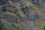 Lava coated slopes of dormant Vesuvius volcano, near Naples, Italy.