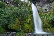 Oceania; New Zealand; Aotearoa; North Island, Mount Egmont, National Park, Dawson Falls
