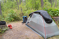 Kintla Lake Campsite Glacier National Park