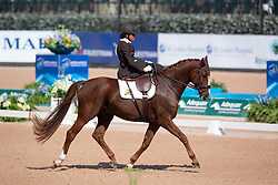 Minneci Barbara, BEL, Stuart<br /> World Equestrian Games - Tryon 2018<br /> © Hippo Foto - Sharon Vandeput<br /> 21/09/2018