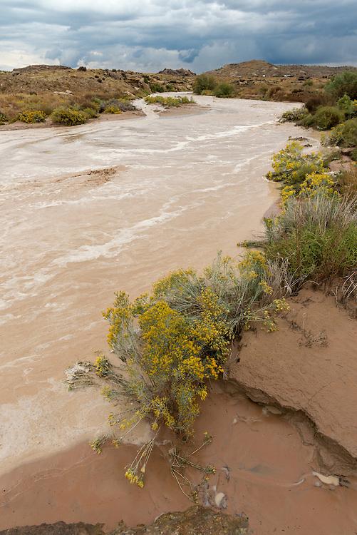 Monezuma Creek in flood, Navajo Nation, Utah.