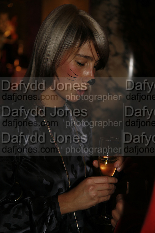 Lyndsey Scott, Party to celebrate the Christian Lacroix Fashion in Motion fashion show and the opening of  M/M Paris: Antigone Under Hypnosis part of  Paris Calling the UK-wide celebration of contemporary French culture. V. & A. London. 31 October 2006. -DO NOT ARCHIVE-© Copyright Photograph by Dafydd Jones 66 Stockwell Park Rd. London SW9 0DA Tel 020 7733 0108 www.dafjones.com