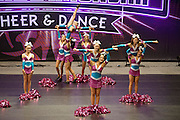 2013 All Star Cheerleading Federtaion Western Australian State Championships, held in Perth on October 6, 2013