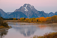 The predawn Belt of Venus colors the sky pink behind Mt. Moran and the snake river.