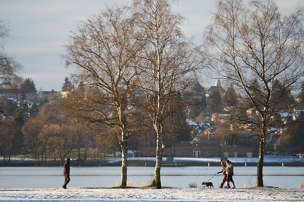 People walk with their dogs along the shore of Green Lake after a snow storm, in Seattle, Washington.