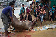 Men slaughter a bull ahead of the celebrations that mark the end of Ramadan, Balukhali, Camp 11, part of the refugee camp sheltering over 800,000 Rohingya refugees, Cox's Bazar, Bangladesh, June 12, 2018. Children, the infirm and elderly, men and women, face impossibly difficult conditions in a sprawling temporary city built of plastic sheets and bamboo.