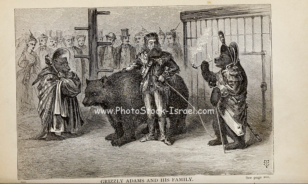 GRIZZLY ADAMS AND HIS FAMILY, From the autobiographical Book ' Struggles and triumphs; or, Forty years' recollections of P.T. Barnum ' By Barnum, P. T. (Phineas Taylor), 1810-1891 Published by The Courier Company Buffalo, N.Y. in 1879. Phineas Taylor Barnum (July 5, 1810 – April 7, 1891) was an American showman, politician, and businessman, remembered for promoting celebrated hoaxes and for founding the Barnum & Bailey Circus (1871–2017). He was also an author, publisher, and philanthropist,