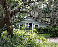 House Under the Live Oaks with Spanish Moss   McClellanville, South Carolina photo by catherine brown