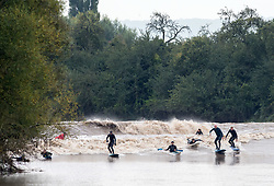 © Licensed to London News Pictures. 30/09/2019. Minsterworth, Gloucestershire, UK. Surfers and kayakers ride the waves of a four star severn bore at Minsterworth, one of the highest bores of the year. The Bristol Channel and Severn estuary have the second highest tidal range in the world and the tide comes up the river Severn creating a wave known as a bore. Photo credit: Simon Chapman/LNP.
