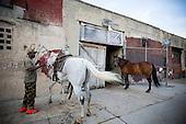 Phillie's Urban Cowboys