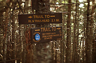 Trail Signs on Hurricane Mt