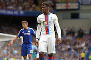 Wilfried Zaha of Crystal Palace looking on. Barclays Premier League, Chelsea v Crystal Palace at Stamford Bridge in London on Saturday 29th August 2015.<br /> pic by John Patrick Fletcher, Andrew Orchard sports photography.
