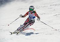 Piche Invitational Paul Ladouceur Championship slalom U14 girls  2nd run.    ©2019 Karen Bobotas Photographer