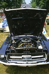 Ford Mustang At Car Show