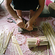 A woman weaving a lid for a picnic basket in Lu Thuong Te grass weaving village, Ha Tay province, Vietnam. With Vietnam's growing population making less land available for farmers to work, families unable to sustain themselves are turning to the creation of various products in rural areas.  These 'craft' villages specialise in a single product or activity, anything from palm leaf hats to incense sticks, or from noodle making to snake-catching. Some of these 'craft' villages date back hundreds of years, whilst others are a more recent response to enable rural farmers to earn much needed extra income.