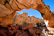 Hickman Natural Bridge, Waterpocket Fold, Capitol Reef National Park, Utah