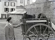 man with calves on a wagon 1930s