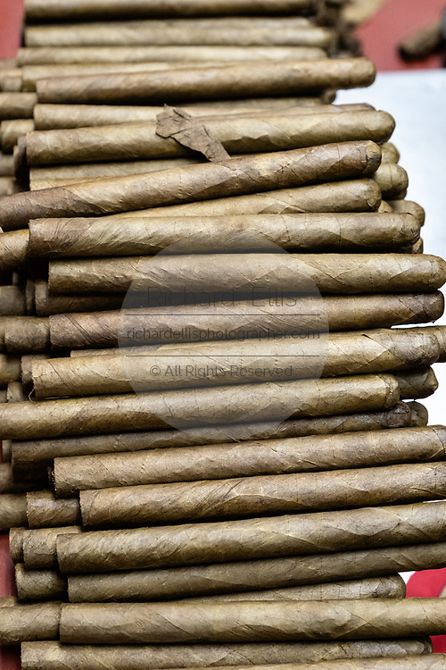 A stack of hand rolled fine cigars waiting to be pressed at the Santa Clara cigar factory in San Andres Tuxtlas, Veracruz, Mexico. The factory follows traditional hand rolling using the same process since 1967 and is considered by aficionados as some of the finest cigars in the world.