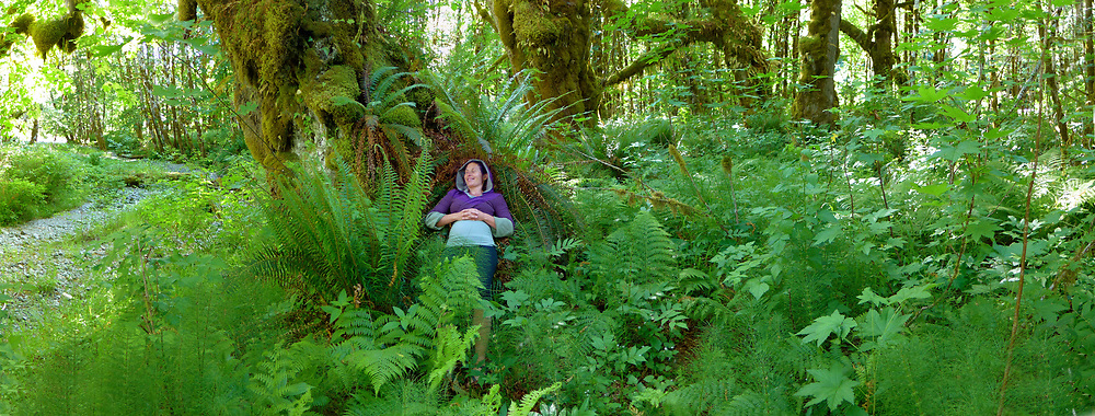 A woman resting under old growth Bigleaf Msples at Cowichan Lake
