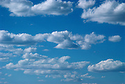 A bright blue sky with white clouds rolling through.