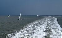 VLIELAND -  Zeilen  op de Waddenzee richting Terschelling of Vlieland. ANP COPYRIGHT KOEN SUYK