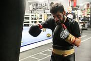 BOXEN: EC Boxing, Training, Hamburg, 30.01.2020<br /> <br /> © Torsten Helmke