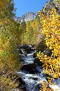 High Sierra Mountain Stream