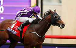 November 3, 2017 - San Diego, CA, USA - Ryan Moore aboard Mendelssohn won the Breeders' Cup Juvinile Turf Grade I race at the Del Mar Thoroughbred Club on Friday, Nov. 3, 2017.  (Photo by K.C. Alfred/The San Diego Union-Tribune (Credit Image: © K.C. Alfred/San Diego Union-Tribune via ZUMA Wire)