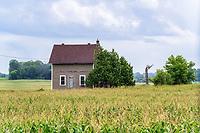 https://Duncan.co/farmhouse-in-corn-field