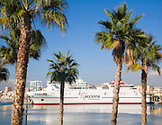 Palm trees in new port development looking at acciona line ship Malaga, Spain