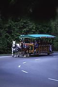 Horse Carrage, Stanley Park, Vancouver, Canada<br />