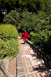 San Francisco: Greenwich Street steps near Coit Tower.  Photo copyright Lee Foster. Photo # casanf104273