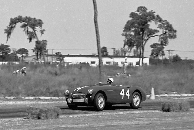 Stirling Moss in Austin Healey at 1955 Sebring 12-hour race