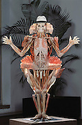 "The ""Winged Man,"" a piece from Gunther von Hagens' Body Worlds exhibit. Body Worlds is a traveling exhibit of real, plastinated human bodies and body parts. Von Hagens invented plastination as a way to preserve body tissue and is the creator of the Body Worlds exhibits.  [2002]"