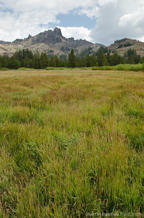 Indian Valley, Sierra Nevada, Toiyabe National Forest, California