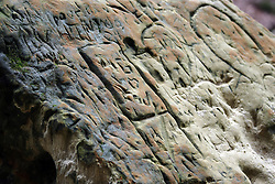 24 March 2007:A large rock of sandstone bears the carved graffiti markings left behind by thoughtless visitors. in St. Louis Canyon in Starved Rock State Park.  Utica, Illinois