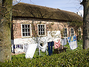 Traditional thatched farmhouse with clothes on washing line, Westgaag, near Maasluis, Netherlands