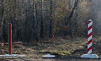 30.10.2010 wies Wyczolki woj podlaskie N/z slupy granicze na granicy polsko-bialoruskiej fot Michal Kosc / AGENCJA WSCHOD