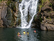 """Waimea Falls swimmers. Valley is a historical nature park with botanical gardens, at 59-864 Kamehameha Highway, Haleiwa, on the North Shore of island of Oahu, Hawaii, USA. Formerly known as """"Waimea Valley Audubon Center,"""" since 2008 the garden has been managed by Hi'ipaka LLC, a non-profit company created by the Office of Hawaiian Affairs. Hawaii is the northernmost island group in Polynesia."""