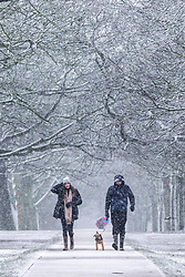 © Licensed to London News Pictures. 14/01/2021. Leeds UK. A couple walk their dog in the snow this morning at Temple Newsam park in Leeds after heavy snowfall this morning in Yorkshire. Photo credit: Andrew McCaren/LNP